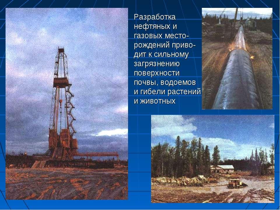 Разработка нефтяных и газовых место-рождений приво-дит к сильному загрязнению...