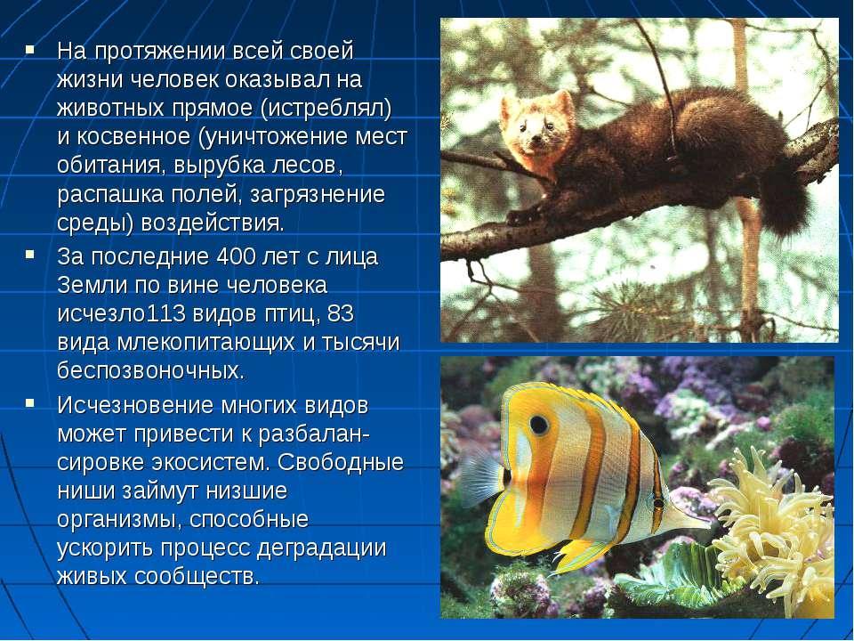 На протяжении всей своей жизни человек оказывал на животных прямое (истреблял...