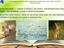 Екологічна ніша — термін в екології, що описує взаємовідносини виду або попул...