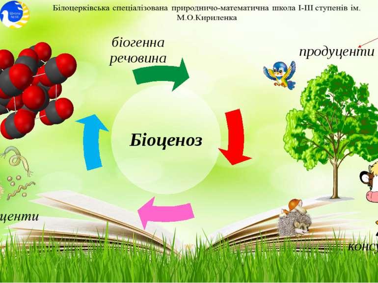консументи продуценти біогенна речовина