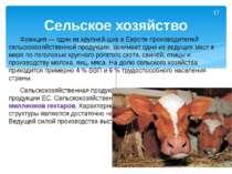 Франция— один из крупней-ших в Европе производителей сельскохозяйственной пр...