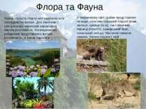 Флора та Фауна Кожна область Португалії відрізняється своєрідністю флори. Для...