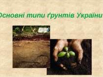 Основні типи ґрунтів України