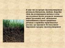 В наш час на процес ґрунтоутворення вплинула діяльність людини. Вирубка лісів...