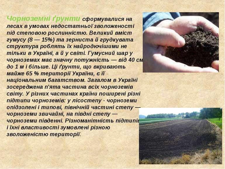 Чорноземні ґрунти сформувалися на лесах в умовах недостатньої зволоженості пі...