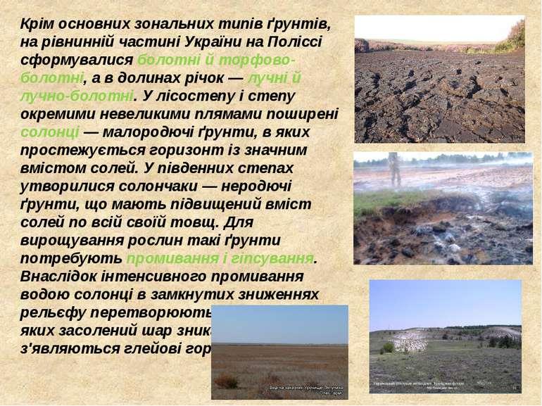 Крім основних зональних типів ґрунтів, на рівнинній частині України на Полісс...