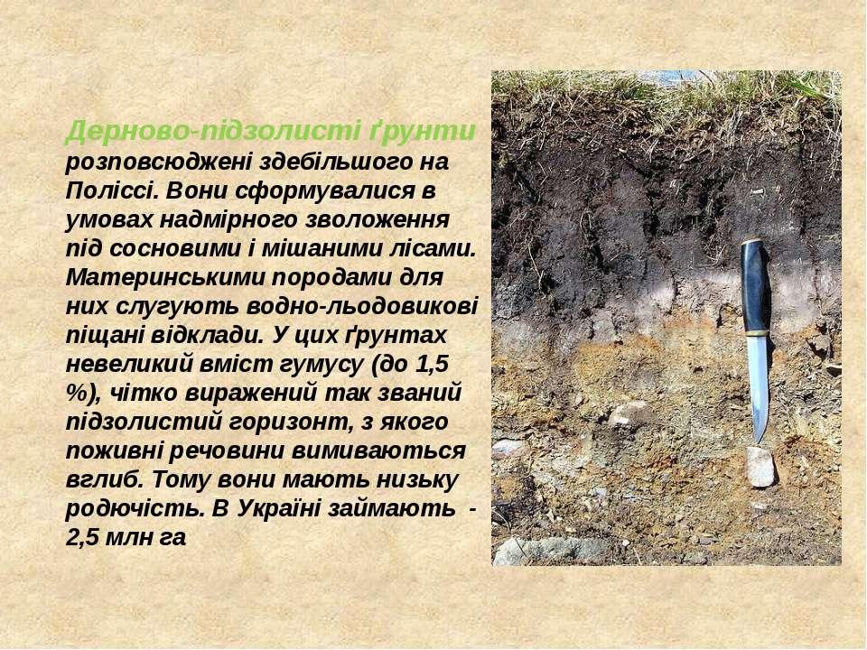 Дерново-підзолисті ґрунти розповсюджені здебільшого на Поліссі. Вони сформува...