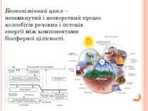 Біогеохімічний цикл – незамкнутий і незворотний процес колообігів речовин і п...