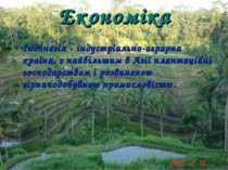 Економіка Індонезія - індустріально-аграрна країна, з найбільшим в Азії плант...