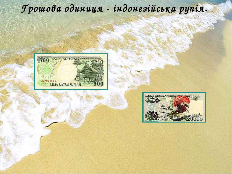 Грошова одиниця - індонезійська рупія.