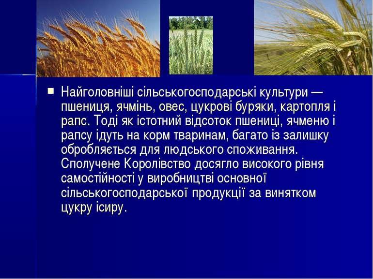 Найголовніші сільськогосподарські культури—пшениця,ячмінь,овес,цукрові б...