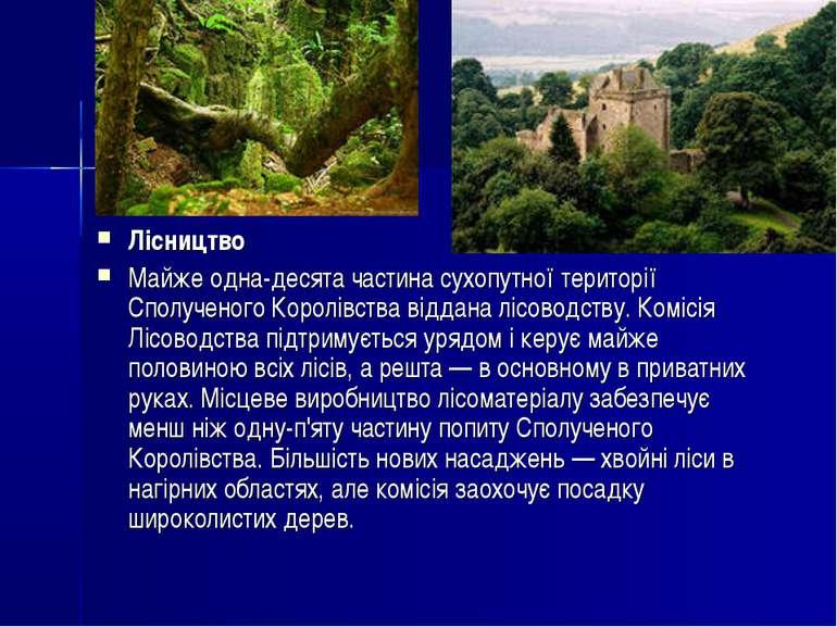 Лісництво Майже одна-десята частина сухопутної території Сполученого Королівс...