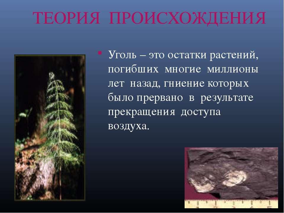 ТЕОРИЯ ПРОИСХОЖДЕНИЯ Уголь – это остатки растений, погибших многие миллионы л...