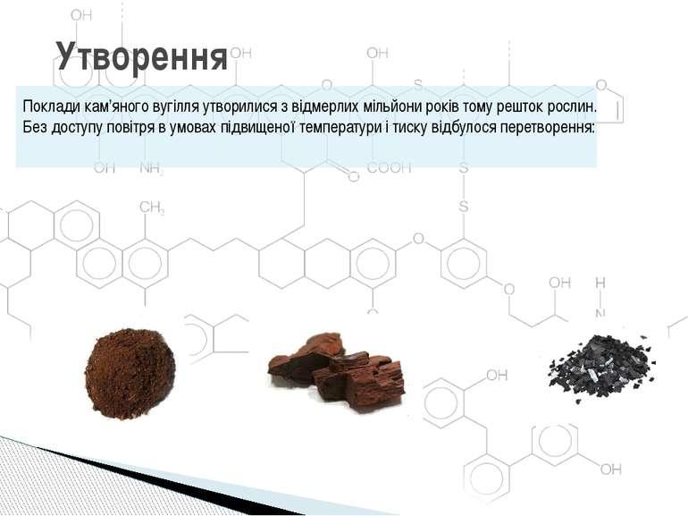 Утворення Поклади кам'яного вугілля утворилися з відмерлих мільйони років том...