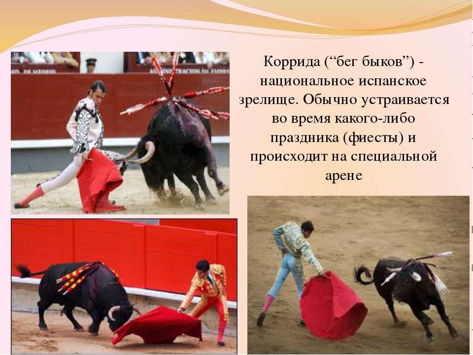 """Коррида (""""бег быков"""") - национальное испанское зрелище. Обычно устраивается в..."""