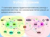 Згубна дія фреонів У стратосфері фреони піддаються фотохімічному розкладу з в...