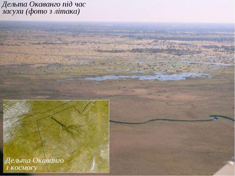 Дельта Окаванго під час засухи (фото з літака) Дельта Окаванго з космосу