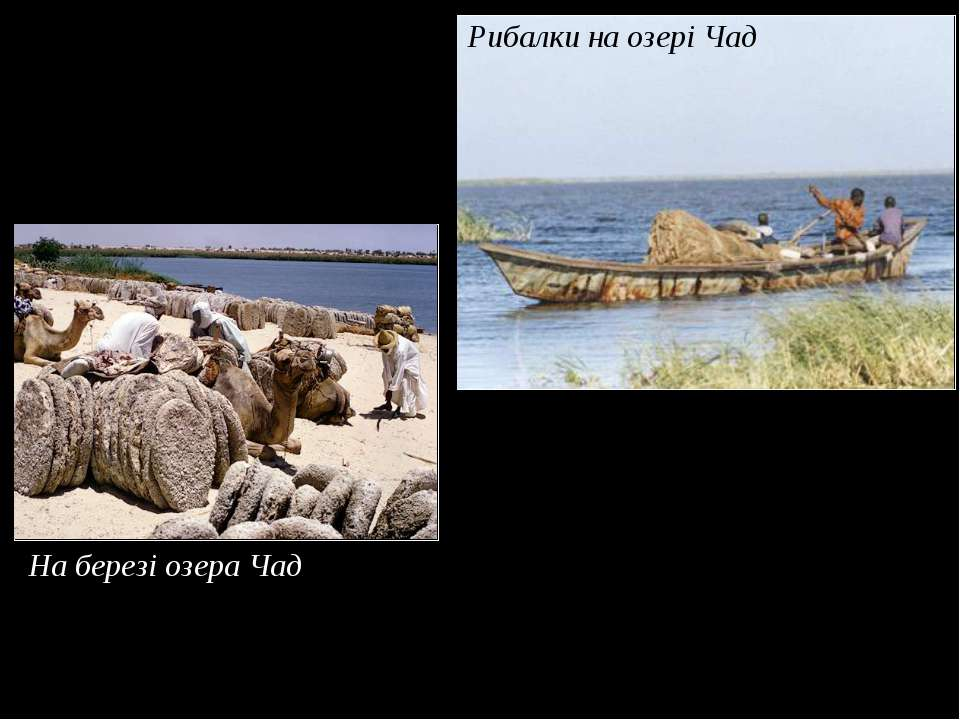 Рибалки на озері Чад На березі озера Чад