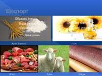 Експорт Зерно, борошно Олія М'ясо Вовна Шкіра