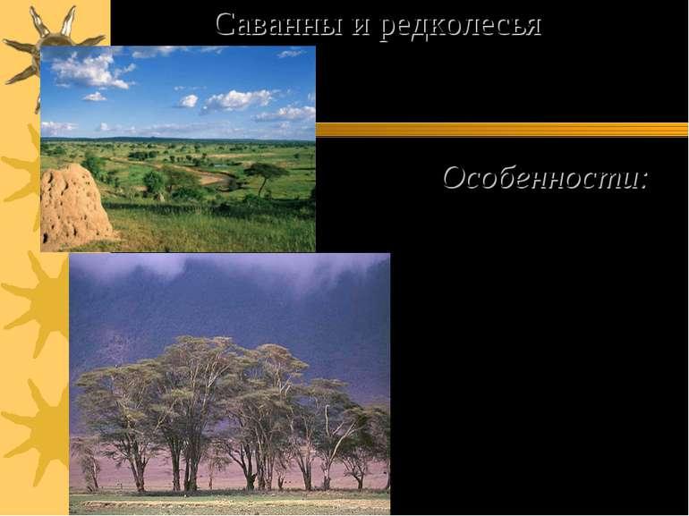 Особенности: 1) Самая большая площадь на материке. 2) Сухой и влажный сезон. ...