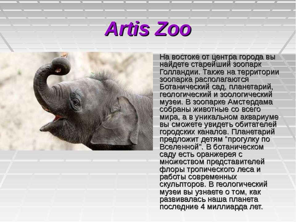 Artis Zoo На востоке от центра города вы найдете старейший зоопарк Голландии....