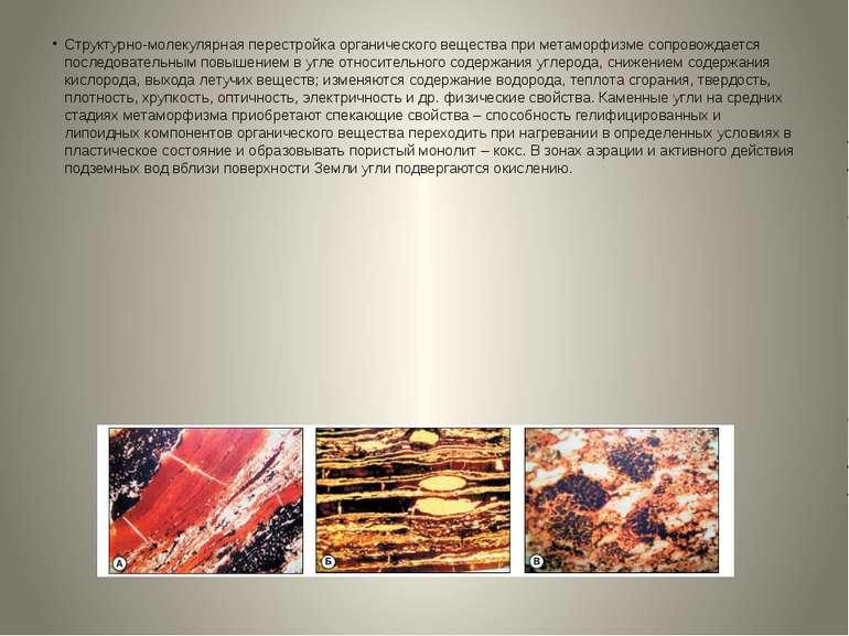 Структурно-молекулярная перестройка органического вещества при метаморфизме с...