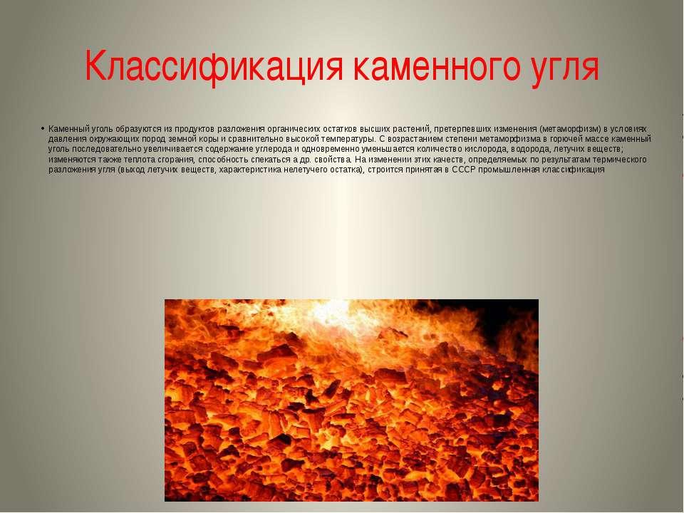 Классификация каменного угля Каменный уголь образуются из продуктов разложени...