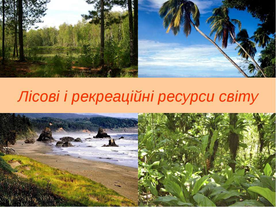 Лісові і рекреаційні ресурси світу
