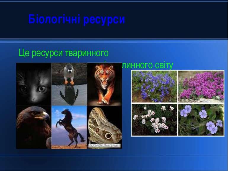 Біологічні ресурси Це ресурси тваринного і рослинного світу