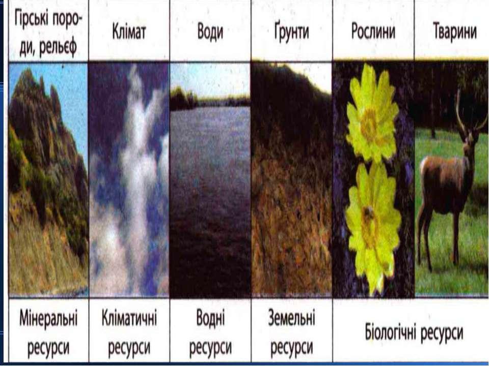 Класифікація: 1) За приналежністю до тих чи інших компонентів природи