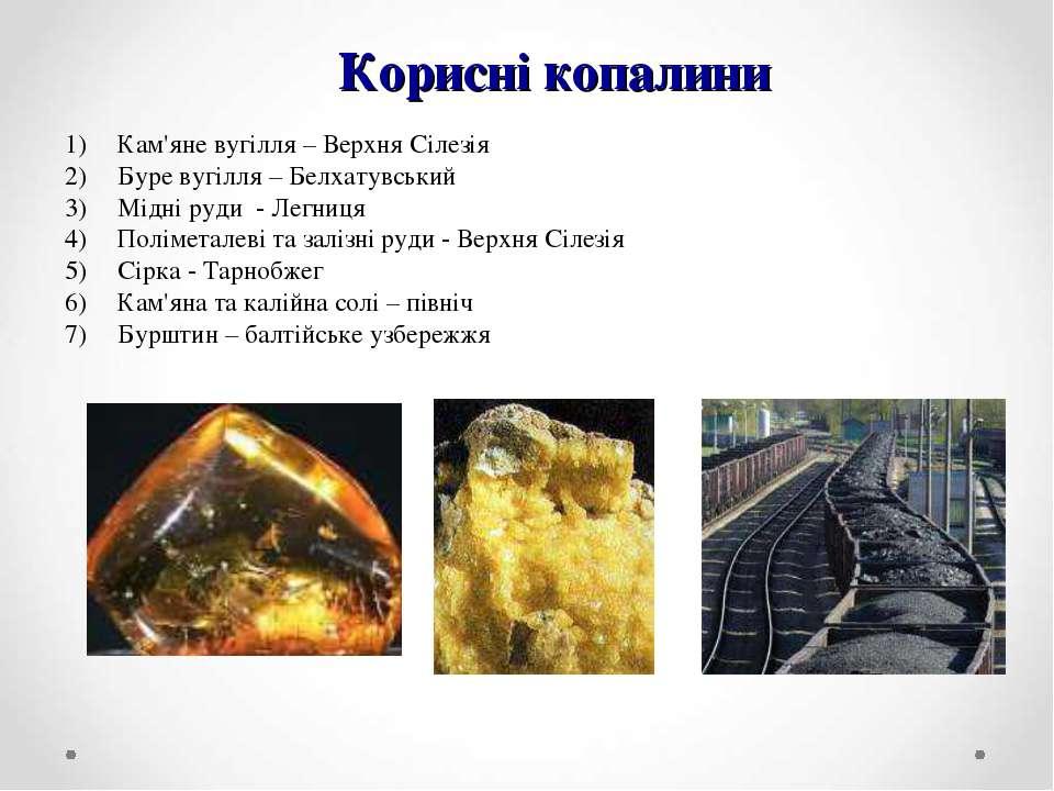 Корисні копалини Кам'яне вугілля – Верхня Сілезія Буре вугілля – Белхатувськи...