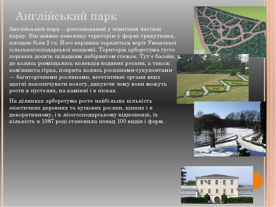 Англійський парк Англійський парк —розташований у північній частині парку. Ві...