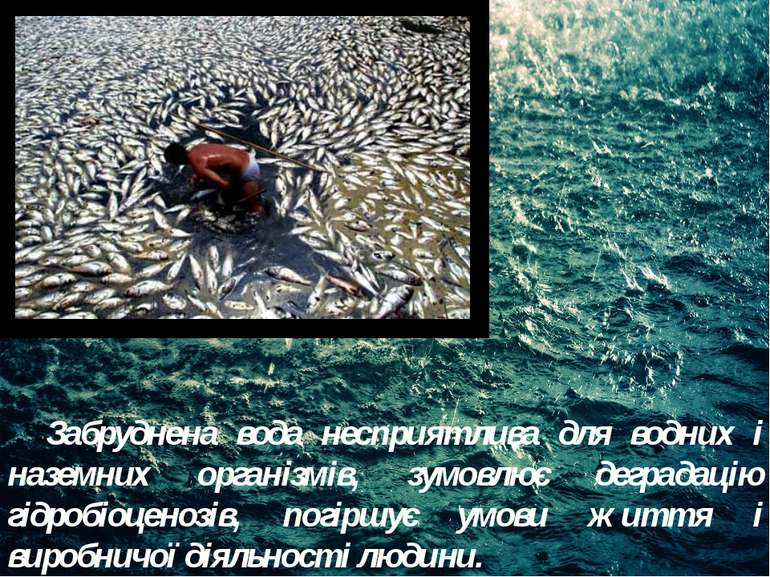 Забруднена вода несприятлива для водних і наземних організмів, зумовлює дегра...