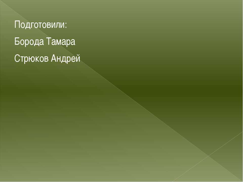 Подготовили: Борода Тамара Стрюков Андрей
