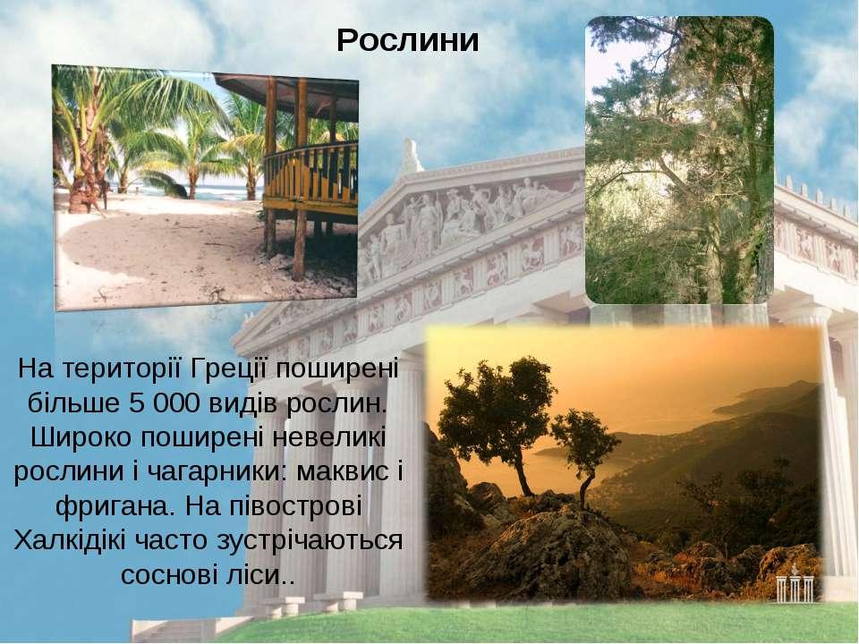 На території Греції поширені більше 5 000 видів рослин. Широко поширені невел...
