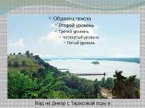 Вид на Днепр с Тарасовой горы в Каневе.