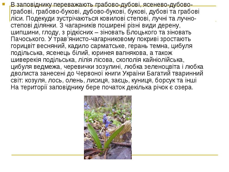 В заповіднику переважають грабово-дубові, ясенево-дубово-грабові, грабово-бук...