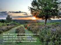 Нью-Форест - це національний парк на півдні Англії, розташований в графствах ...