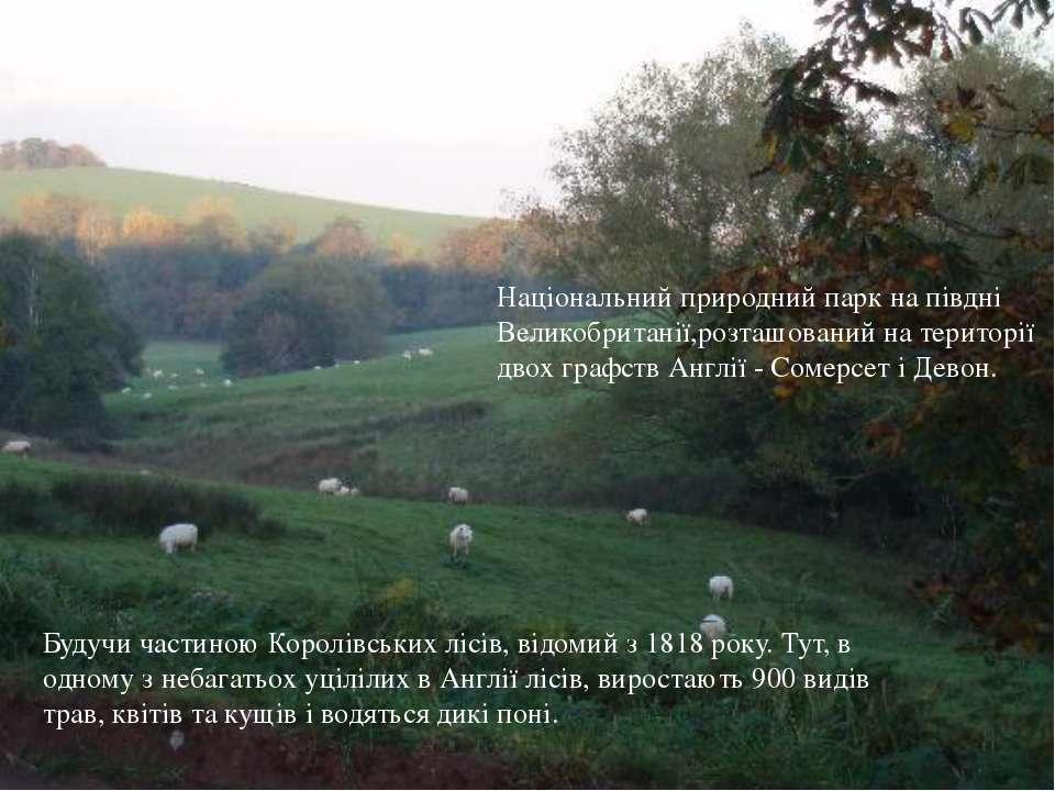 Будучи частиною Королівських лісів, відомий з 1818 року. Тут, в одному з неба...