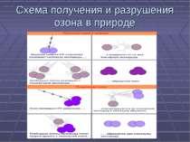 Схема получения и разрушения озона в природе