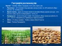 Кукурудза Ячмінь Географія рослинництва Зернові – пшениця, ячмінь, кукурудза,...