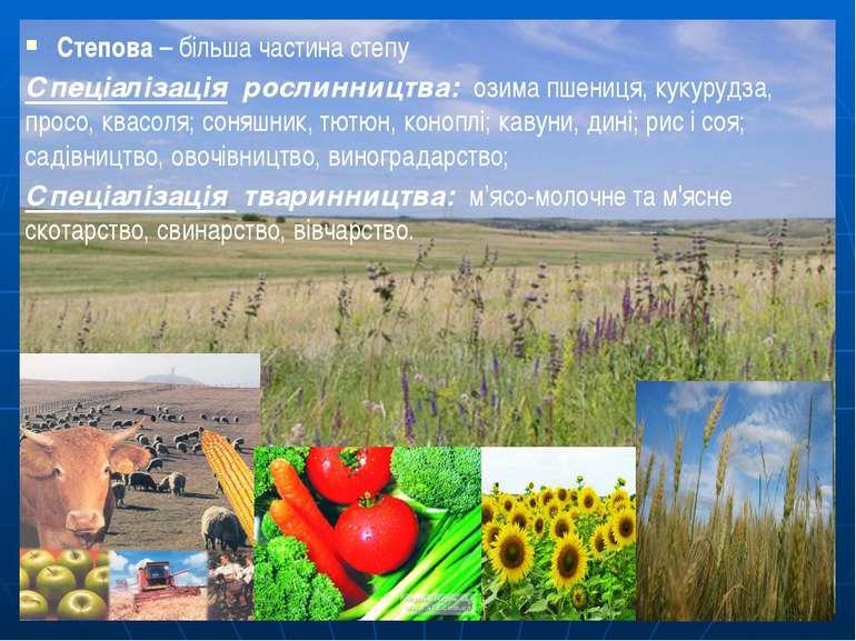 Степова – більша частина степу Спеціалізація рослинництва: озима пшениця, кук...