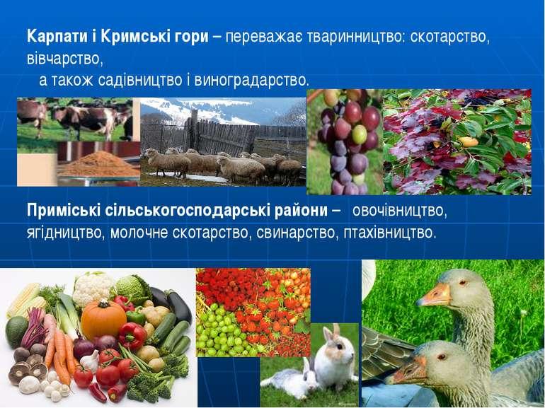 Карпати і Кримські гори – переважає тваринництво: скотарство, вівчарство, а т...