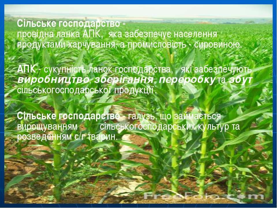 Сільське господарство - провідна ланка АПК, яка забезпечує населення продукта...
