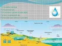 1 .Океанічні відклади 2.Озерні відклади 3.Клітковина в річних кільцях дерев 4...