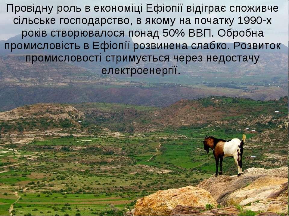 Провідну роль в економіці Ефіопії відіграє споживче сільське господарство, в ...