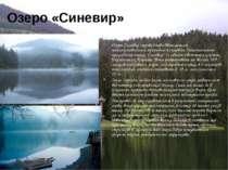 Озеро «Синевир» Озеро Синевир справедливо вважається найкоштовнішим природним...