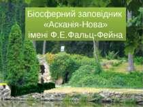 Біосферний заповідник «Асканія-Нова» імені Ф.Е.Фальц-Фейна