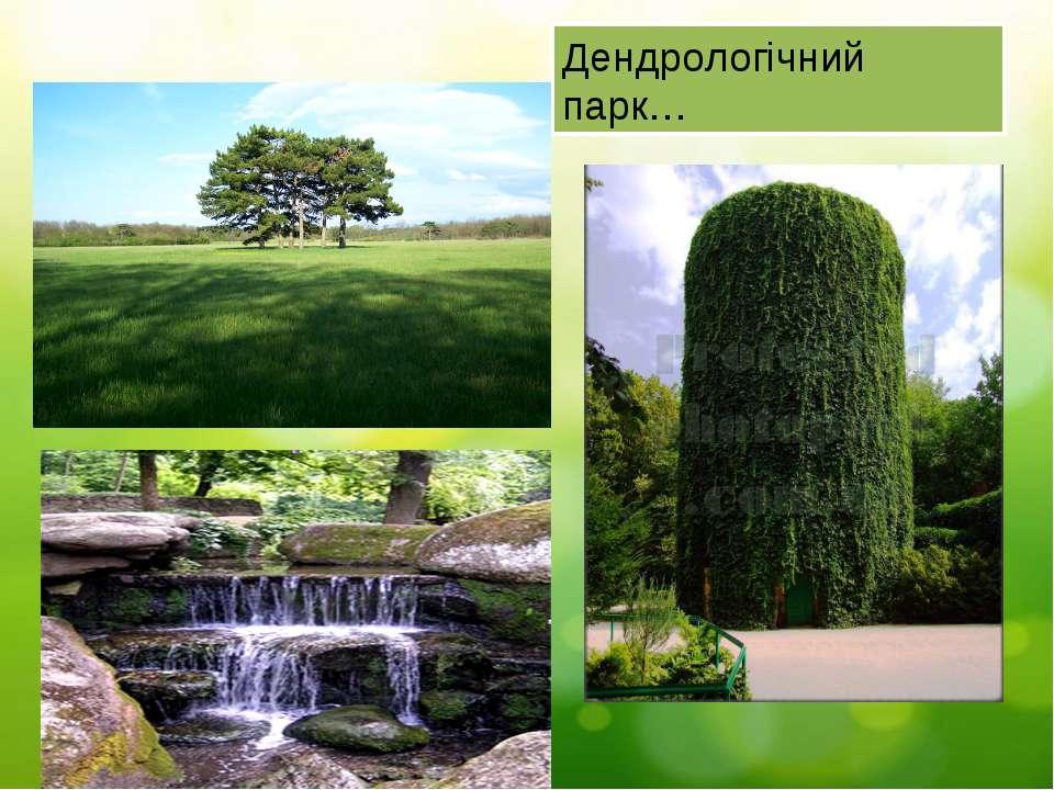 Дендрологічний парк…