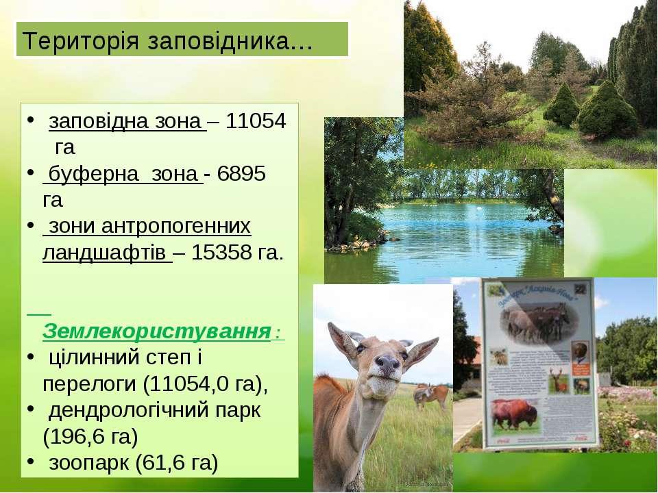 Територія заповідника… заповідна зона – 11054 га буферна зона - 6895 га зони ...